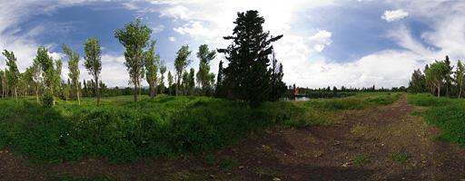 Arboledas de Xochimilco. Parque Ecológico, Ciudad de México