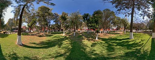 Jardín soleado. Tlalpan, Ciudad de México.